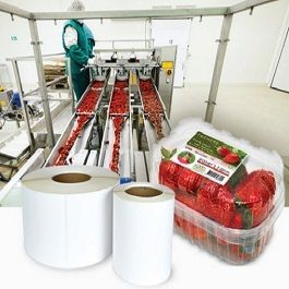 Food Processing Label Printer